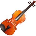 Herald AS144 Violin - Anitom